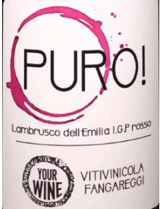€6,99 Puro - Lambrusco Fangareggi (x6)