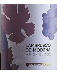 €4.99 (x6) Lambrusco Biologico Modena Dop - Carpi Sorbara
