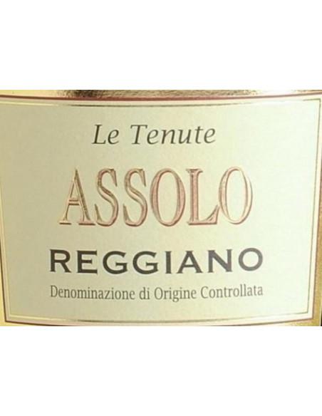 € 6.99 Assolo Lambrusco Medici (6 bott.)