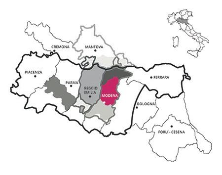 Lambrusco Sorbara